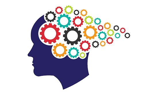 Neuro-pedagogía aplicada a la enseñanza de Movimiento