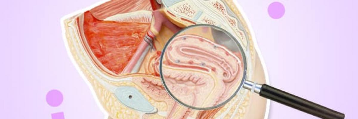 Afecciones Respiratorias y su Orientación en el Suelo Pélvico